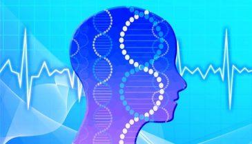 食事療法で育毛!男性の頭頂部の薄毛改善に期待できる食べ物とは?