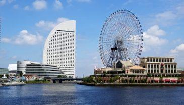 横浜市でAGAや女性薄毛検査のおすすめ病院!植毛は眉毛も可能!